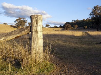 NSW Travelling Stock Reserves – Plan of Management 2018-2019