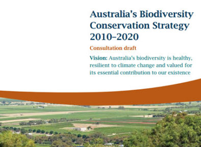Review of Australia's Draft Biodiversity Conservation Strategy