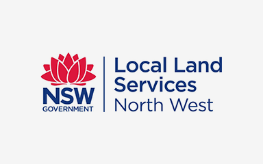 Local Land Services logo