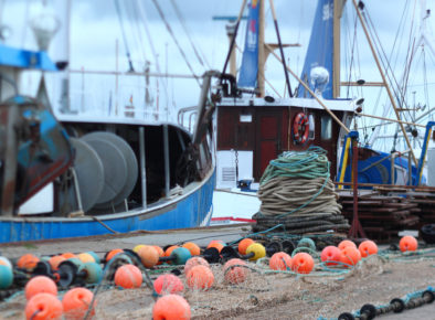 Department of Agriculture (Fisheries)  – Improving perceptions of Australia's fisheries