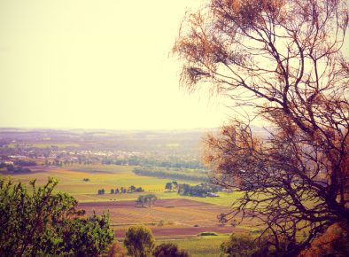 Namoi Unlimited Strategic Planning – Consultation and Facilitation