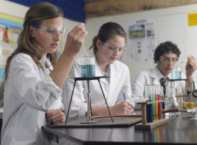 NSW Department of Education Armidale's Future School Consultation