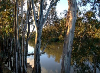 Murray-Darling Basin Water Infrastructure Program
